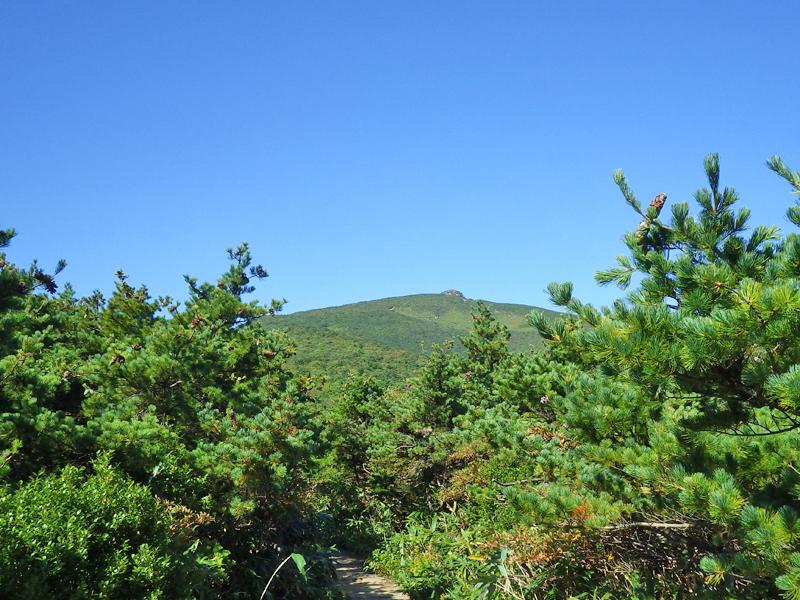 突起状の安達太良山山頂が見える