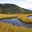 駒の小屋直下の紅葉と池塘