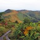 中門岳へ向かうたおやかな稜線の道
