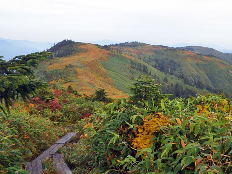 中門岳への稜線散歩