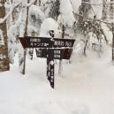 白駒池-高見石分岐