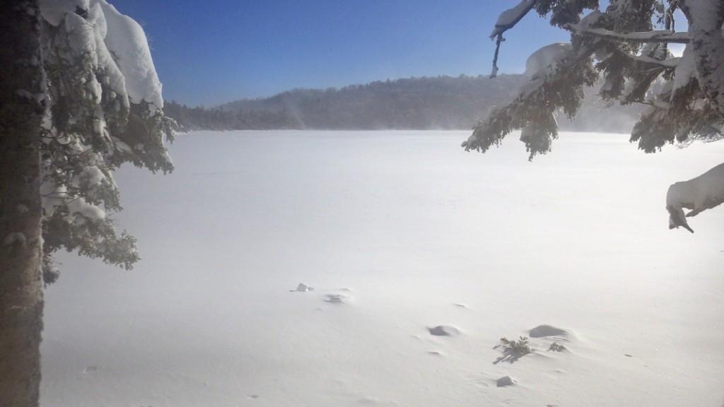 厳冬期の白駒池