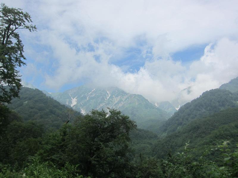 白馬尻への林道からの眺め