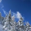 晴れた雪山はエエな~