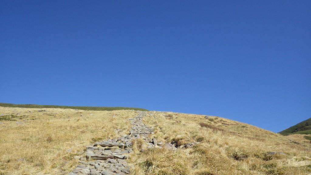 牛首分岐への登り