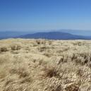 死者を祀る山の風景