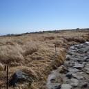 死者の山の道