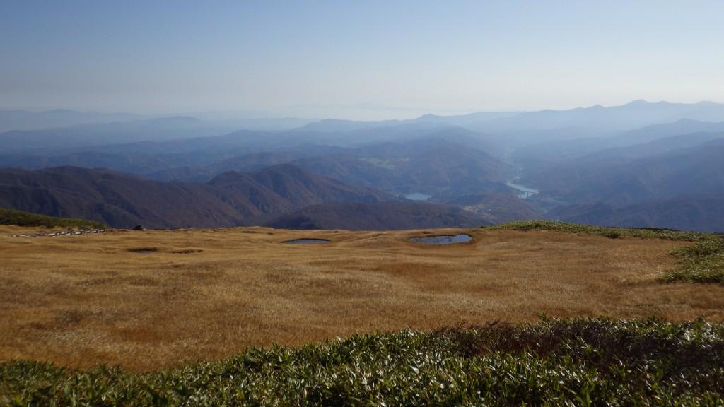 姥ヶ岳の池塘