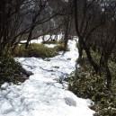 駒ヶ岳へ向かい下る
