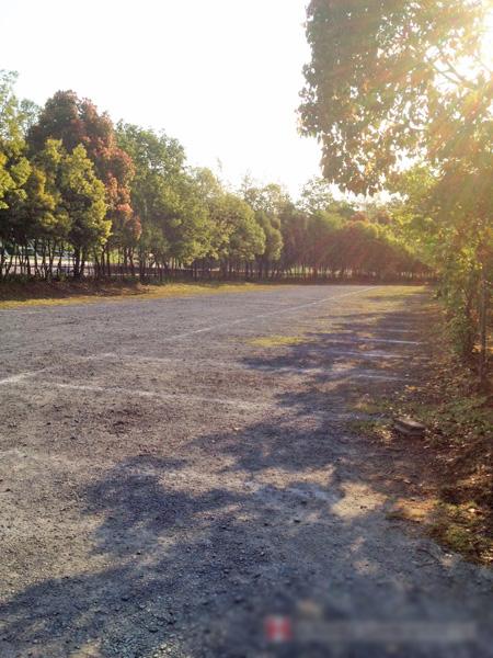 涸沼自然公園駐車場