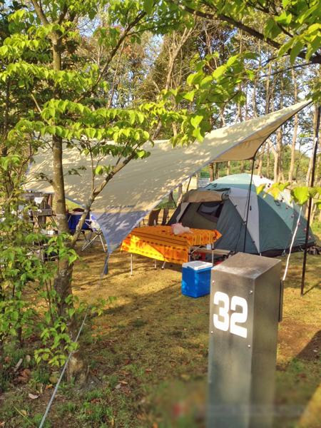涸沼自然公園キャンプサイト32番