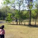 涸沼キャンプ場、他の区画