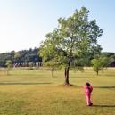 涸沼自然公園広場