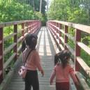 涸沼自然公園せせらぎ広場の橋