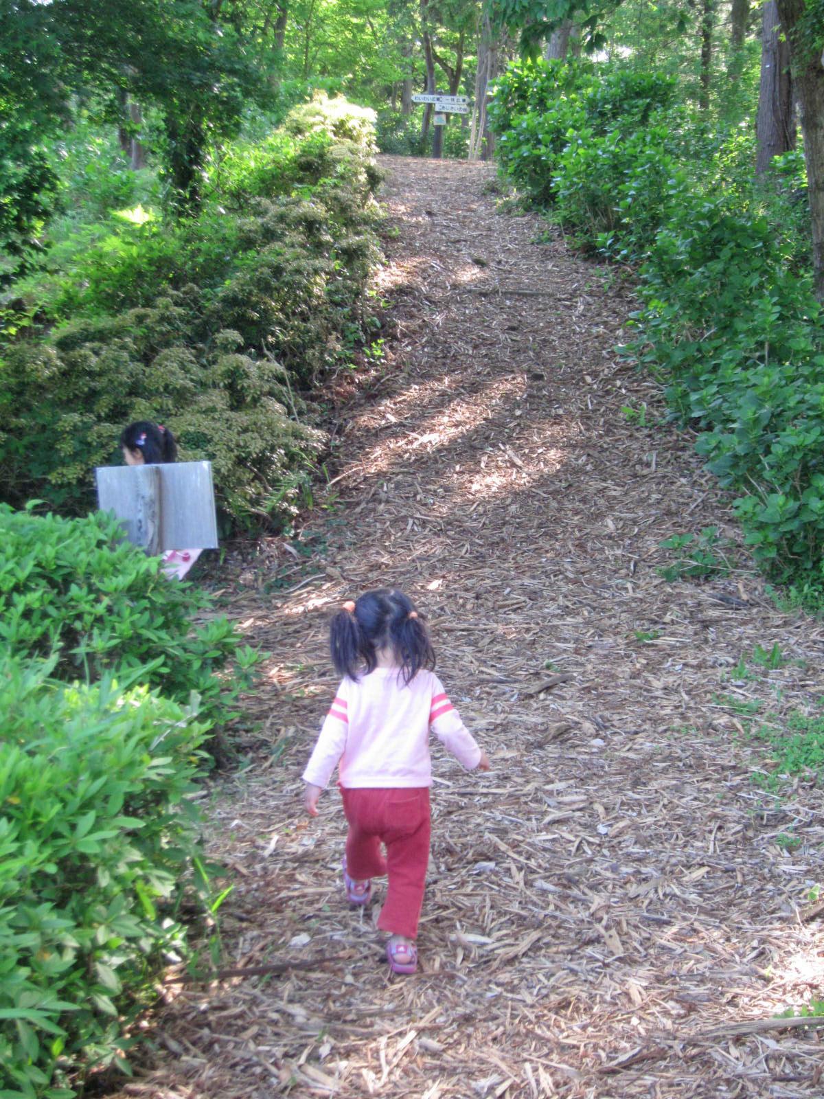 涸沼自然公園内の遊歩道