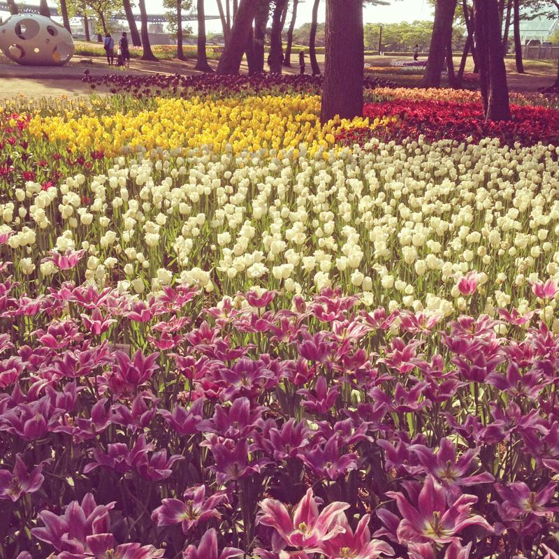 チューリップなど花が咲き乱れている