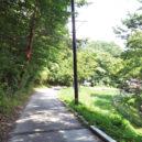 浩庵キャンプ場入口の坂道