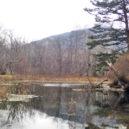 泉門池(いずみやど)