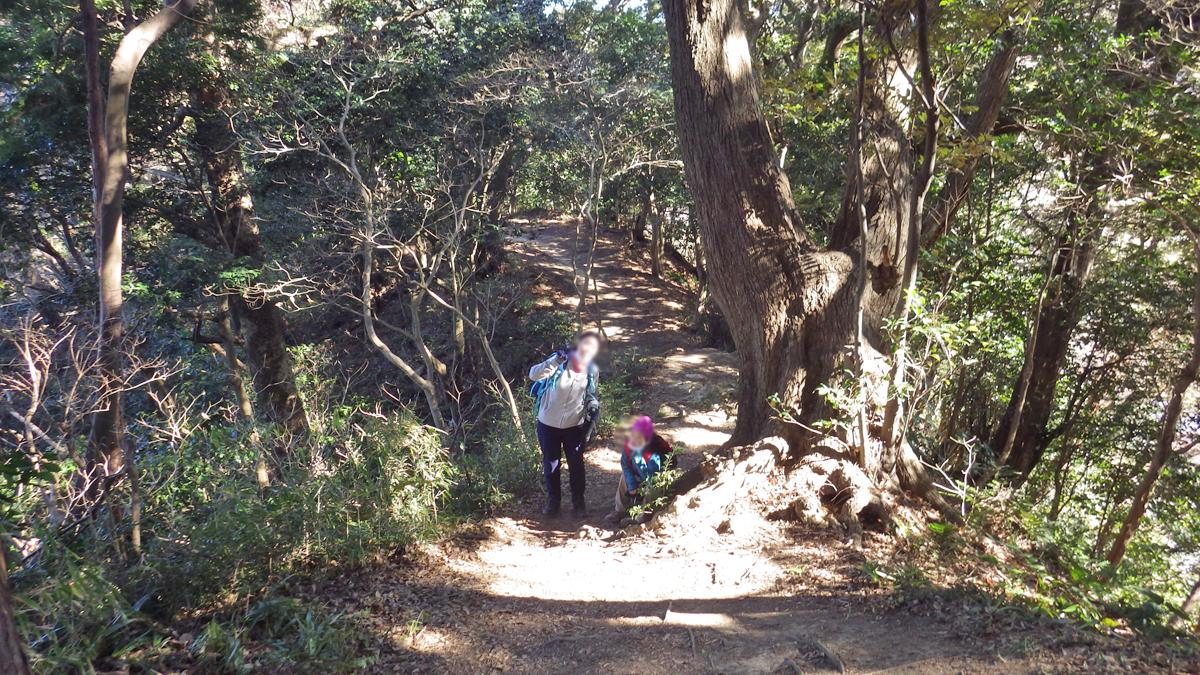 祇園山コース