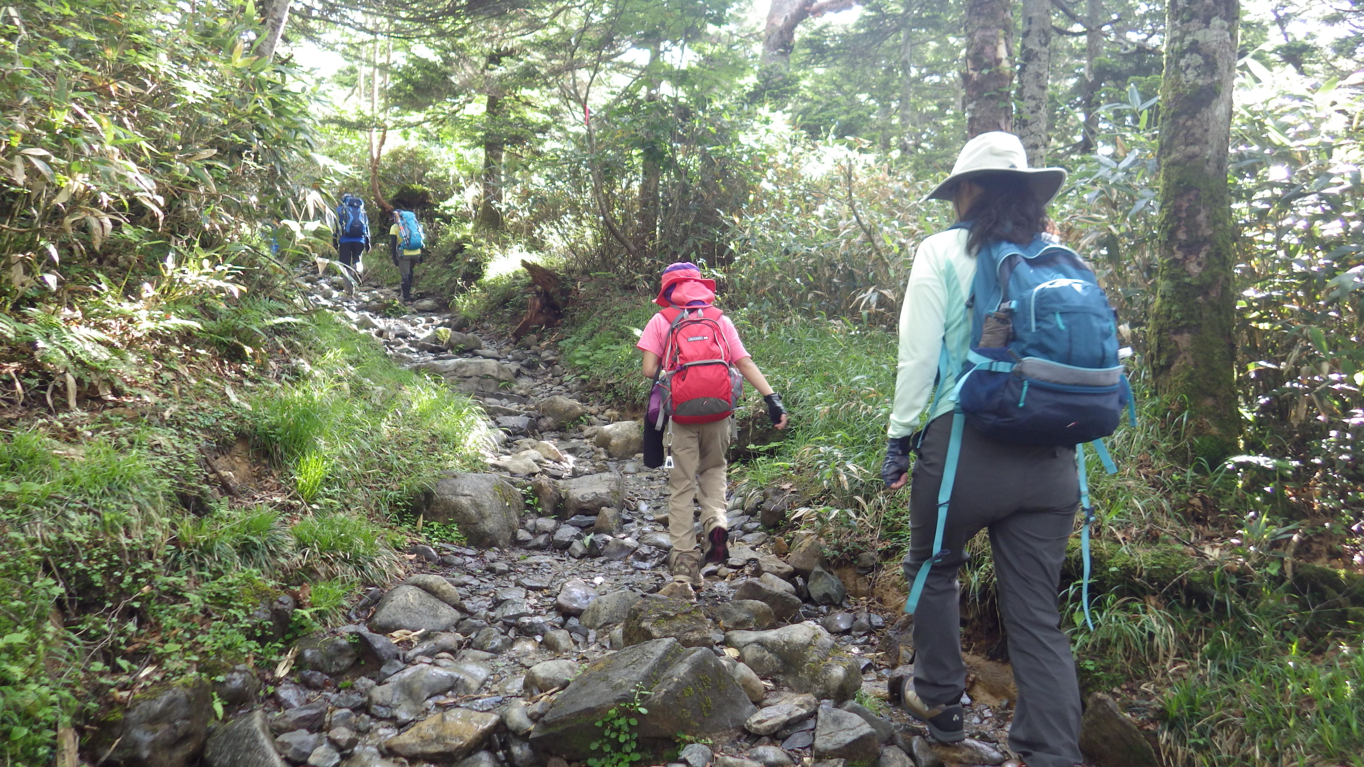 小田越登山口から出発