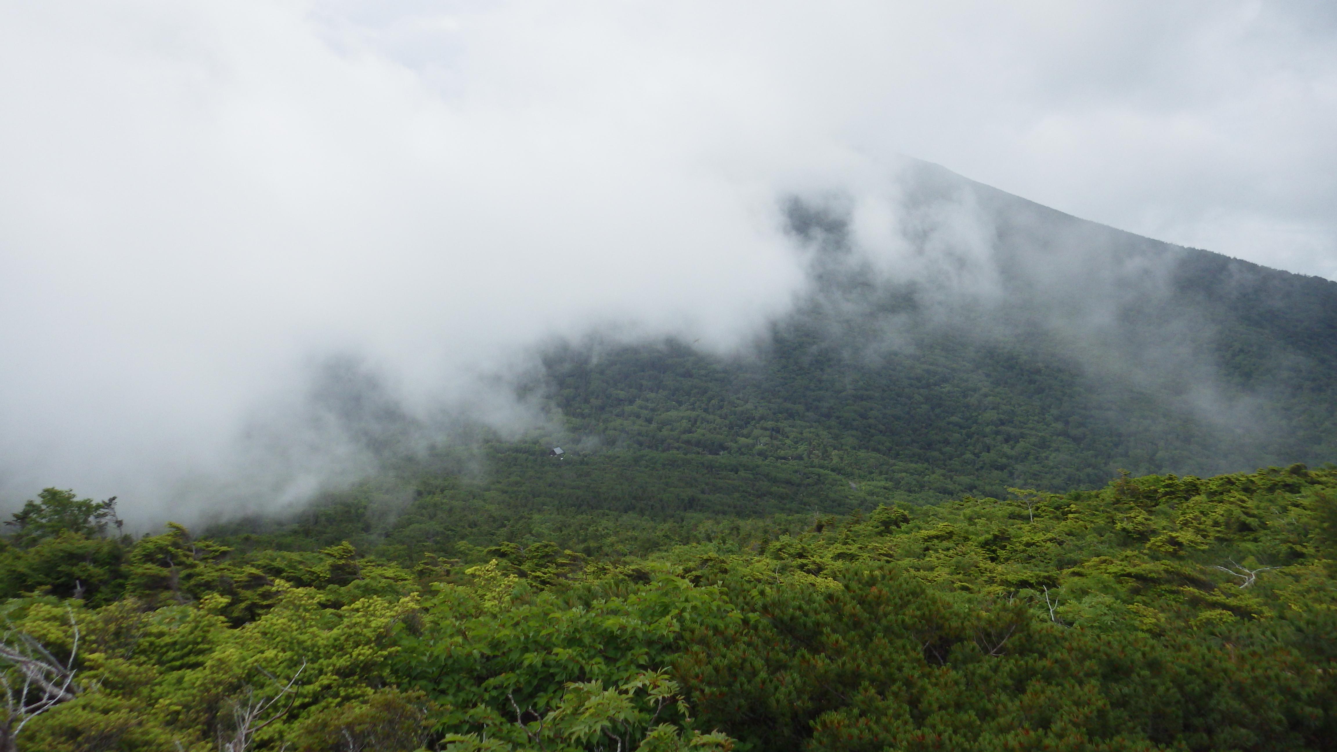 森林限界の上へ