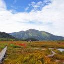 紅葉と至仏山