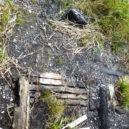 沼尻休憩所の焼けた跡