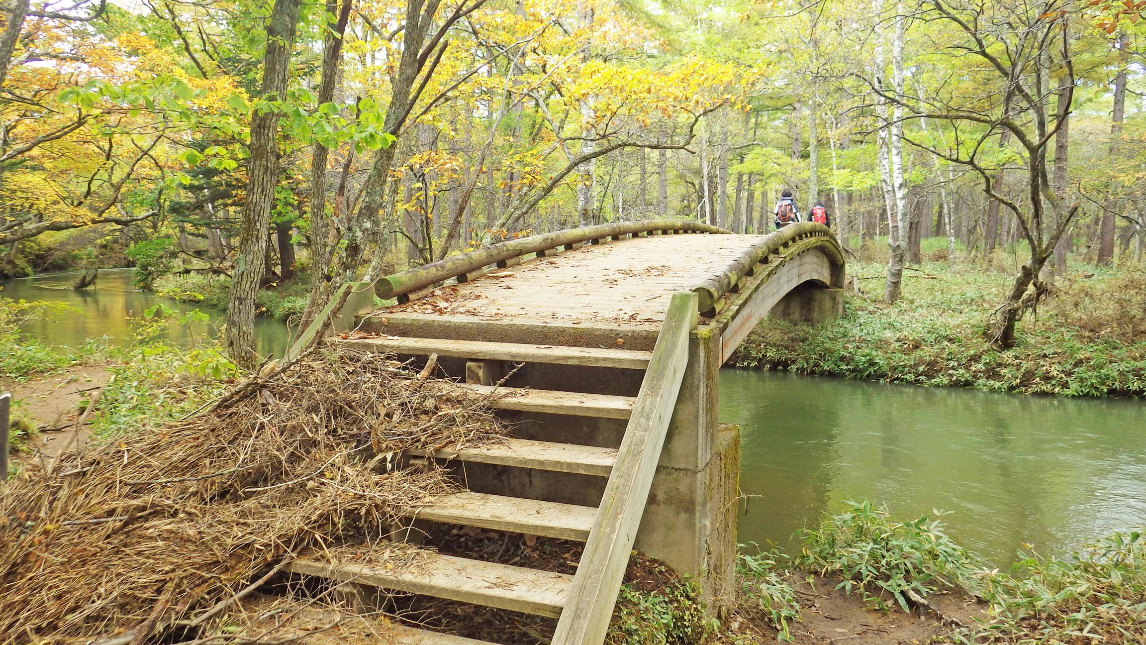 湯川を渡る橋