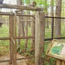 小田代ヶ原の鹿よけ柵