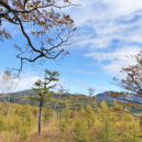 小田城歩道展望台からの眺め