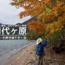 奥日光・小田代ヶ原と千手ヶ浜