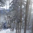 茶臼山の北面、中小場のすぐ上