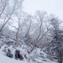 赤岳鉱泉~硫黄岳
