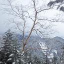 硫黄岳、赤岩の頭~赤岳鉱泉