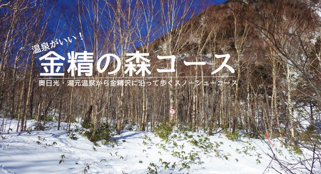 金精の森スノーシューコース