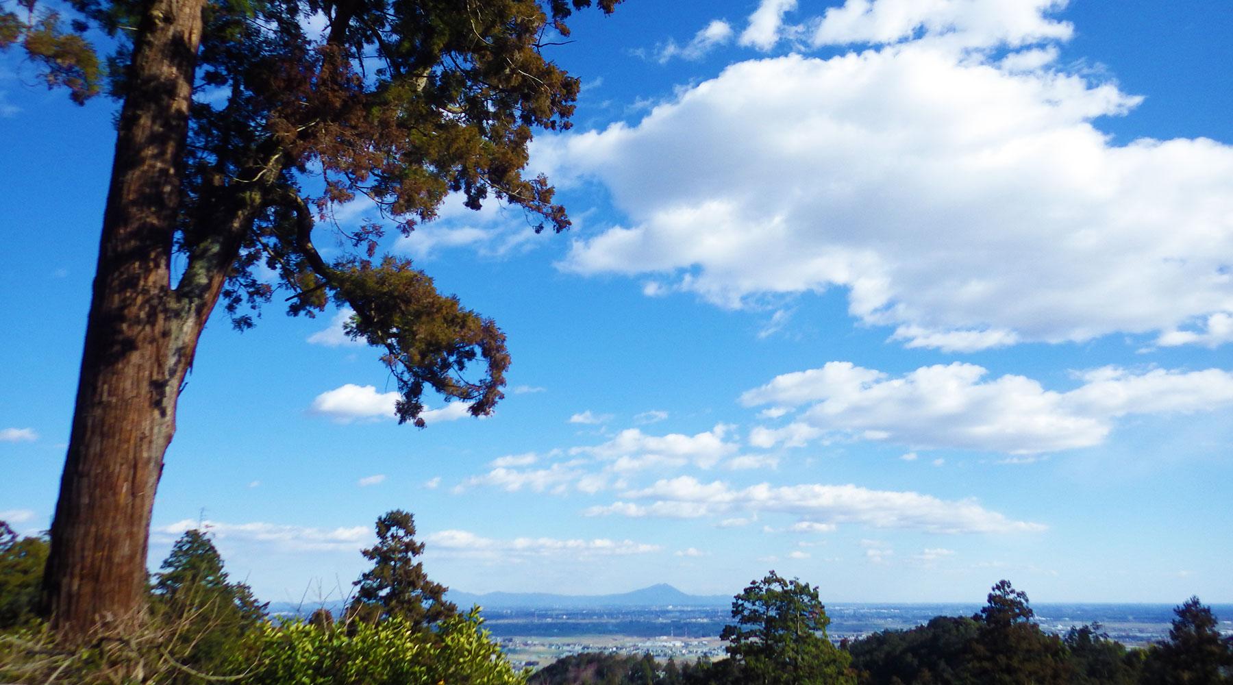太平山神社から筑波山の眺め