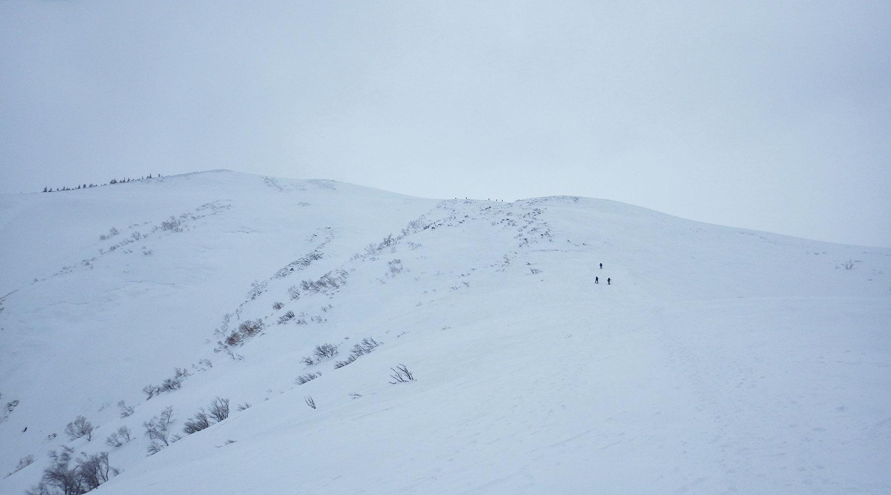 井戸尾根から見たニセ巻機山こと前巻機山
