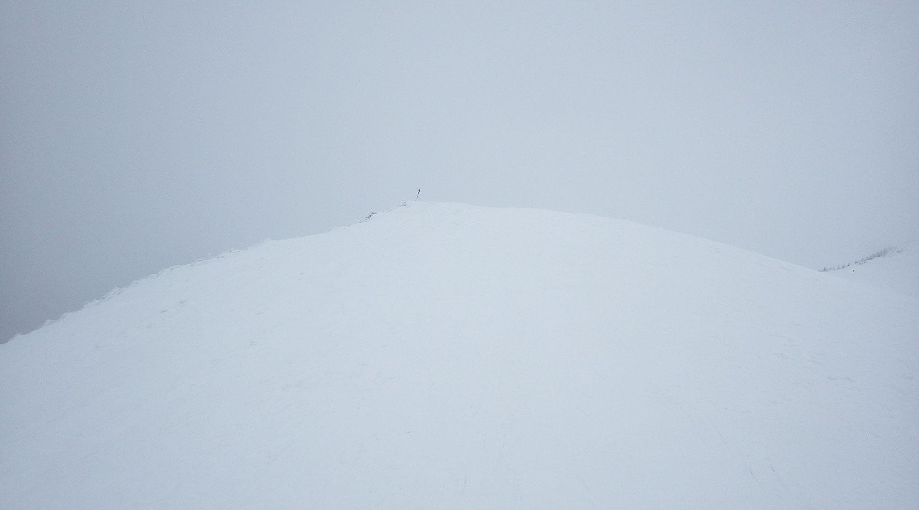 ニセ巻機山山頂手前