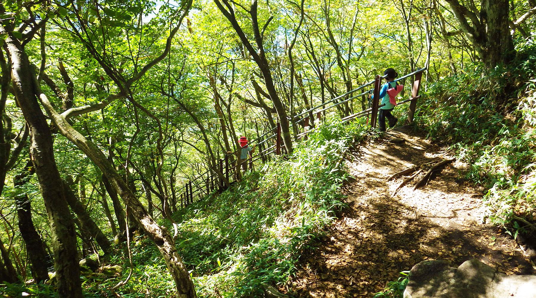 駒ヶ岳から下山