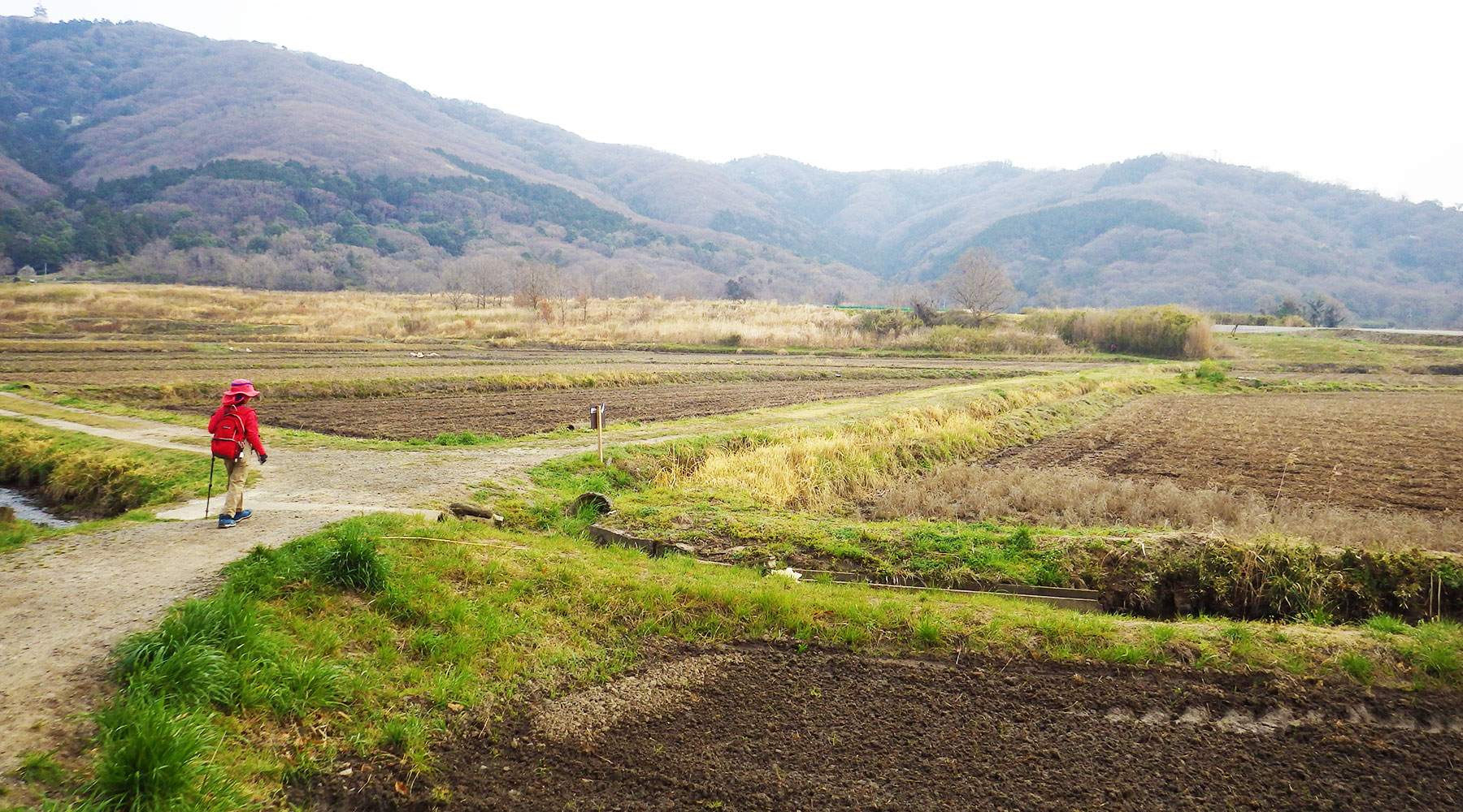 宝篋山・極楽寺コースへの分岐