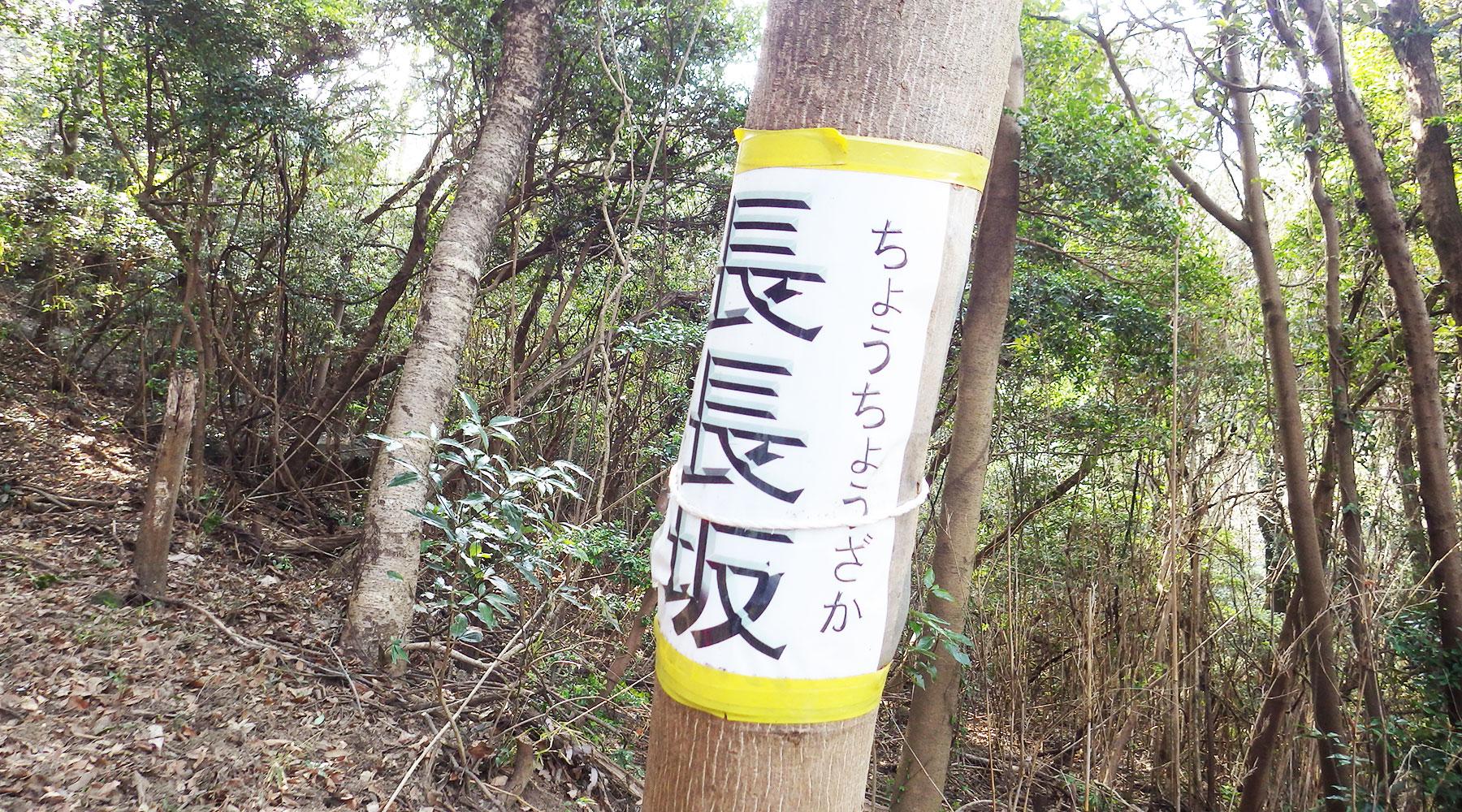 常願寺コース・長長坂