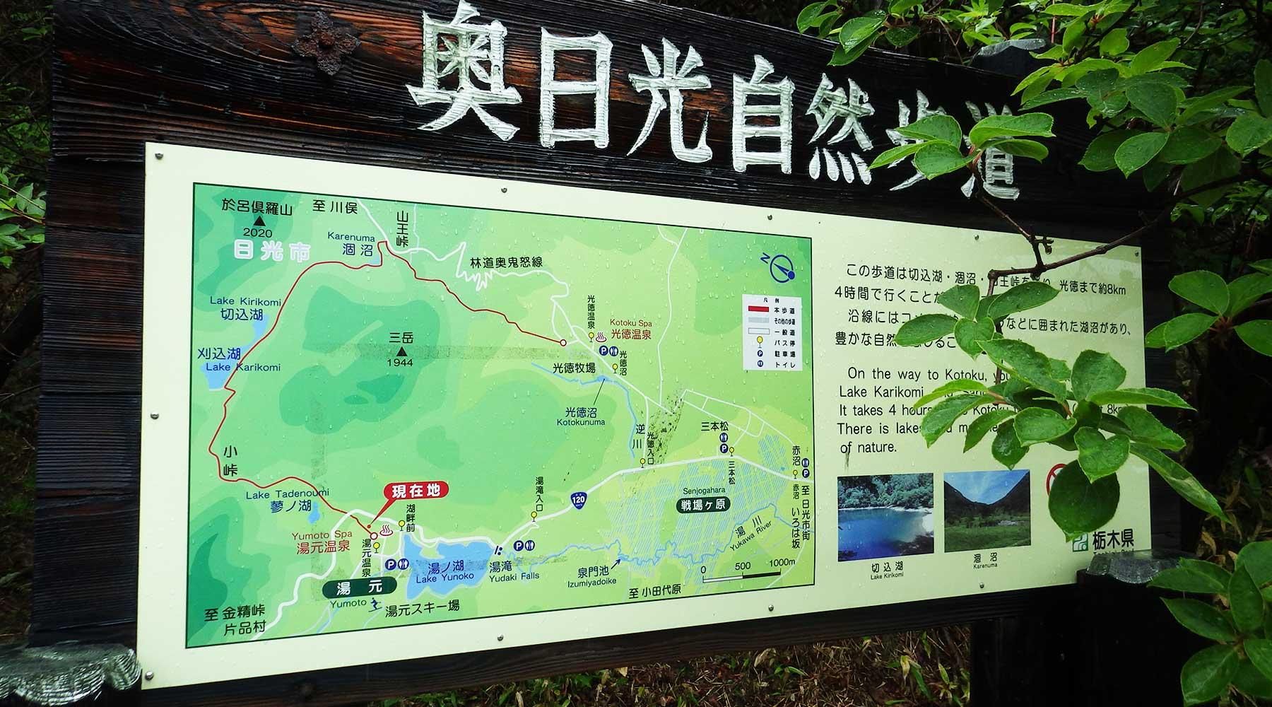 奥日光自然歩道という名のハイキングコース