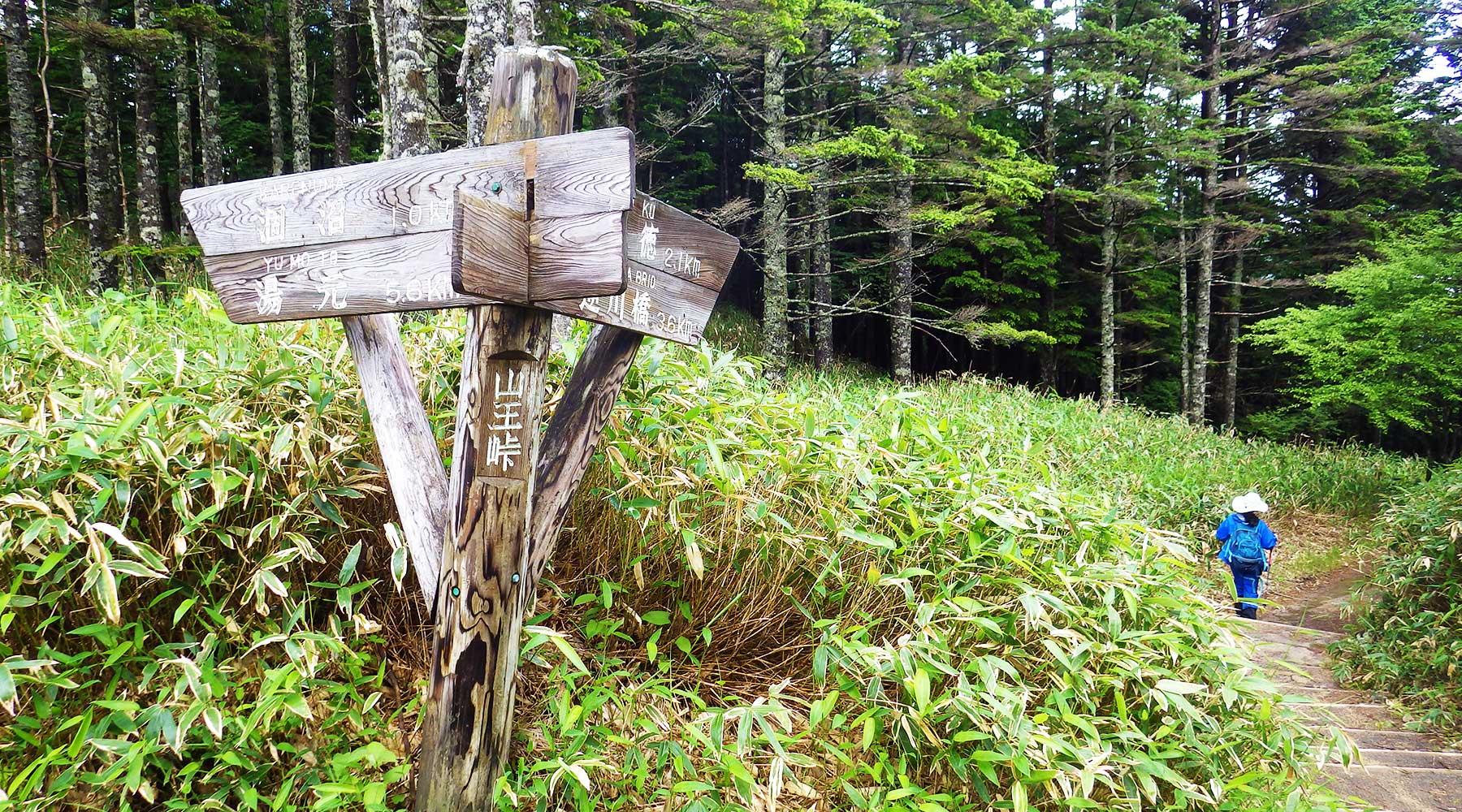 ハイキングコースの方の山王峠