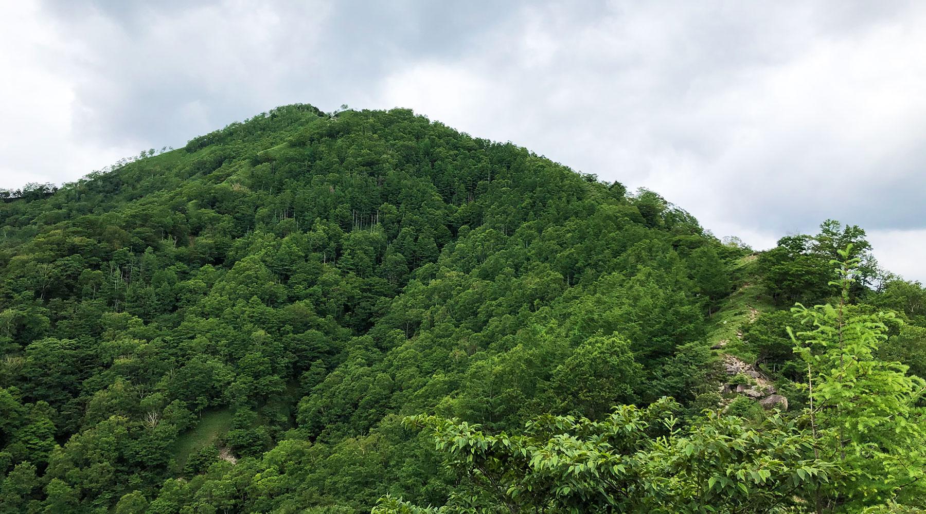 雨量計から見た社山山頂
