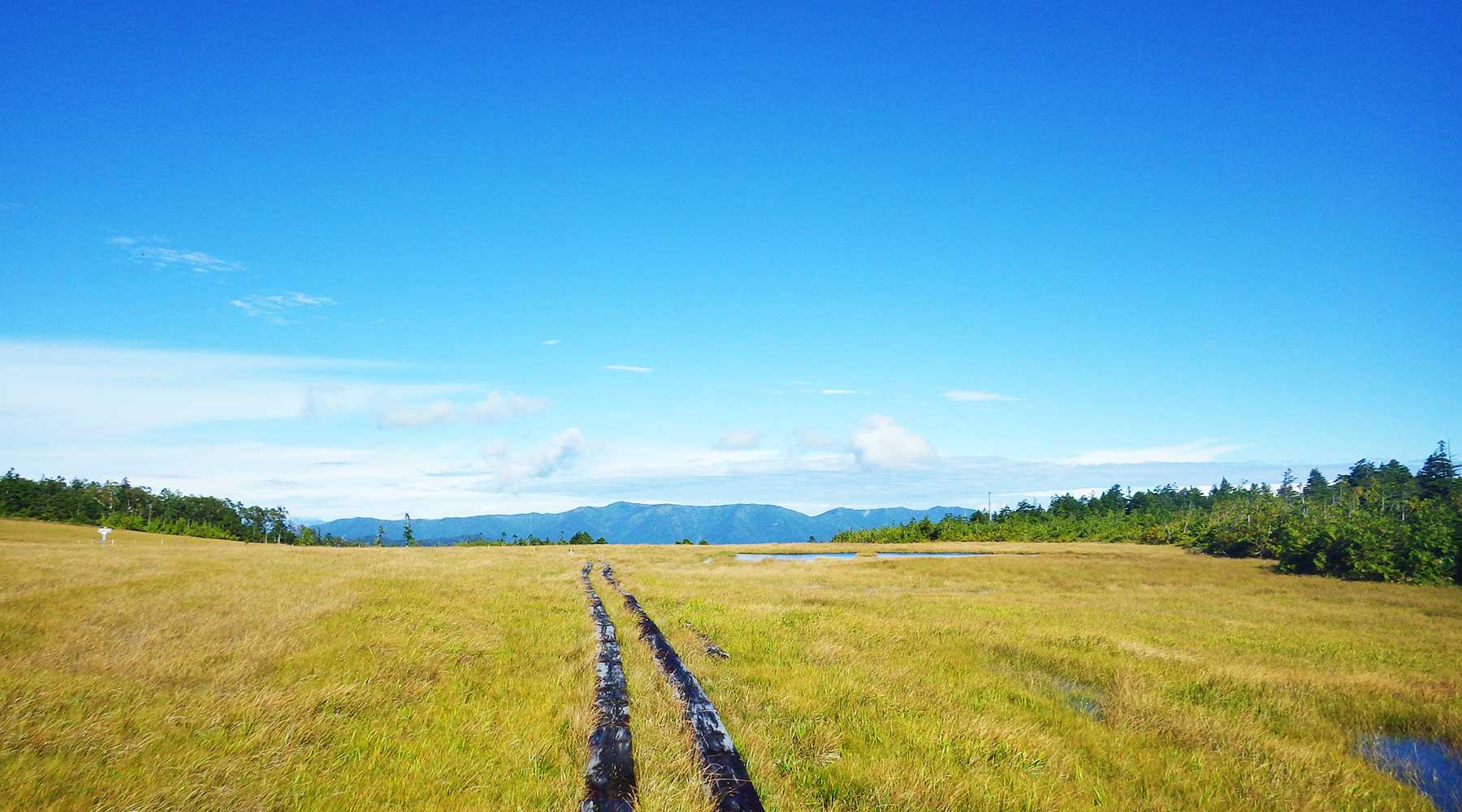 田代山山頂湿原と会津駒ヶ岳