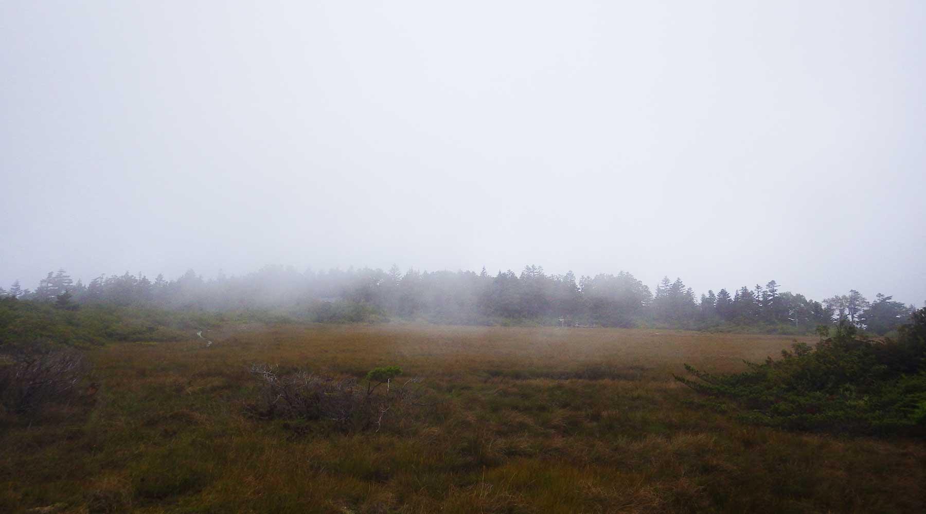 田代山・山頂湿原