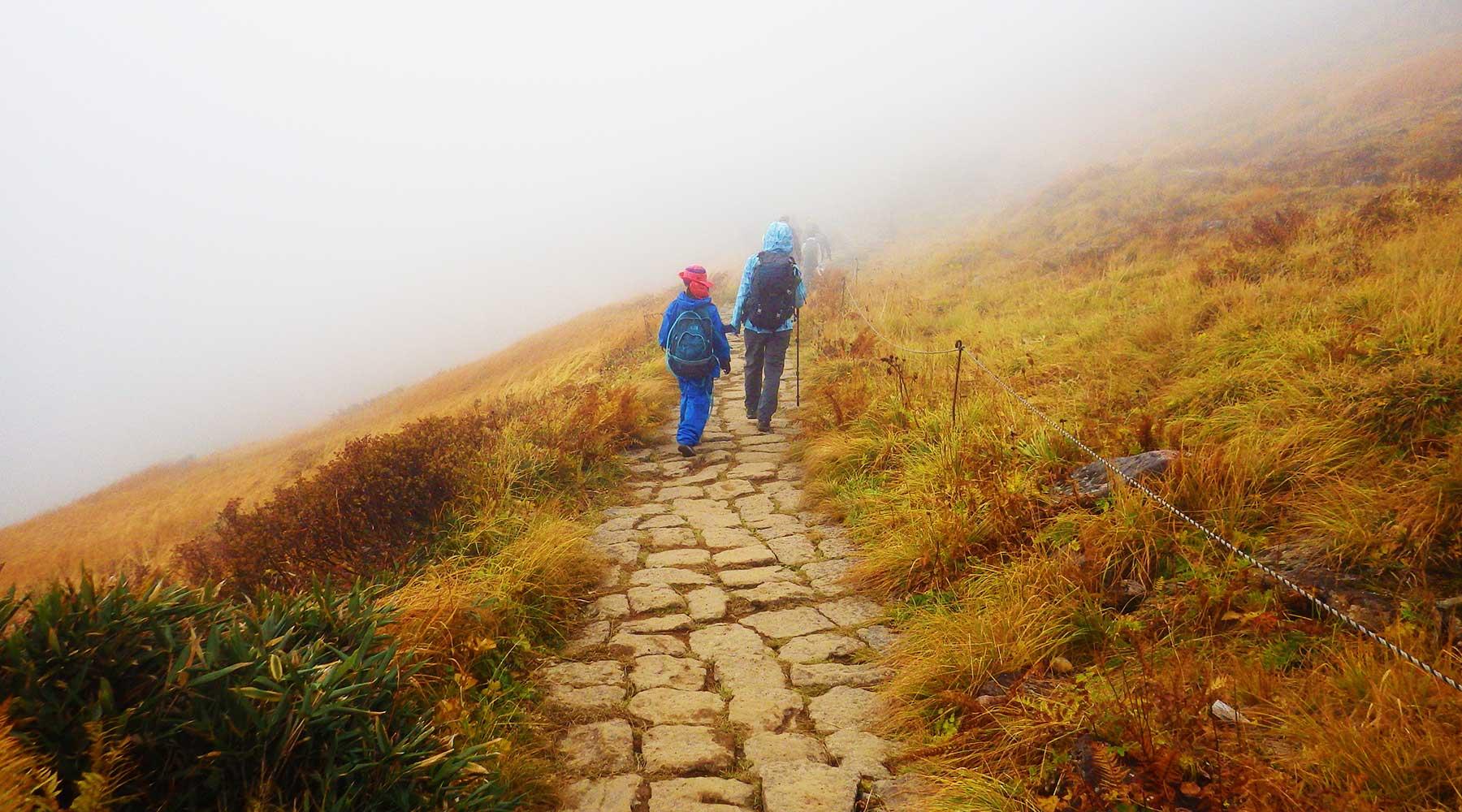 月山・石畳の登山道