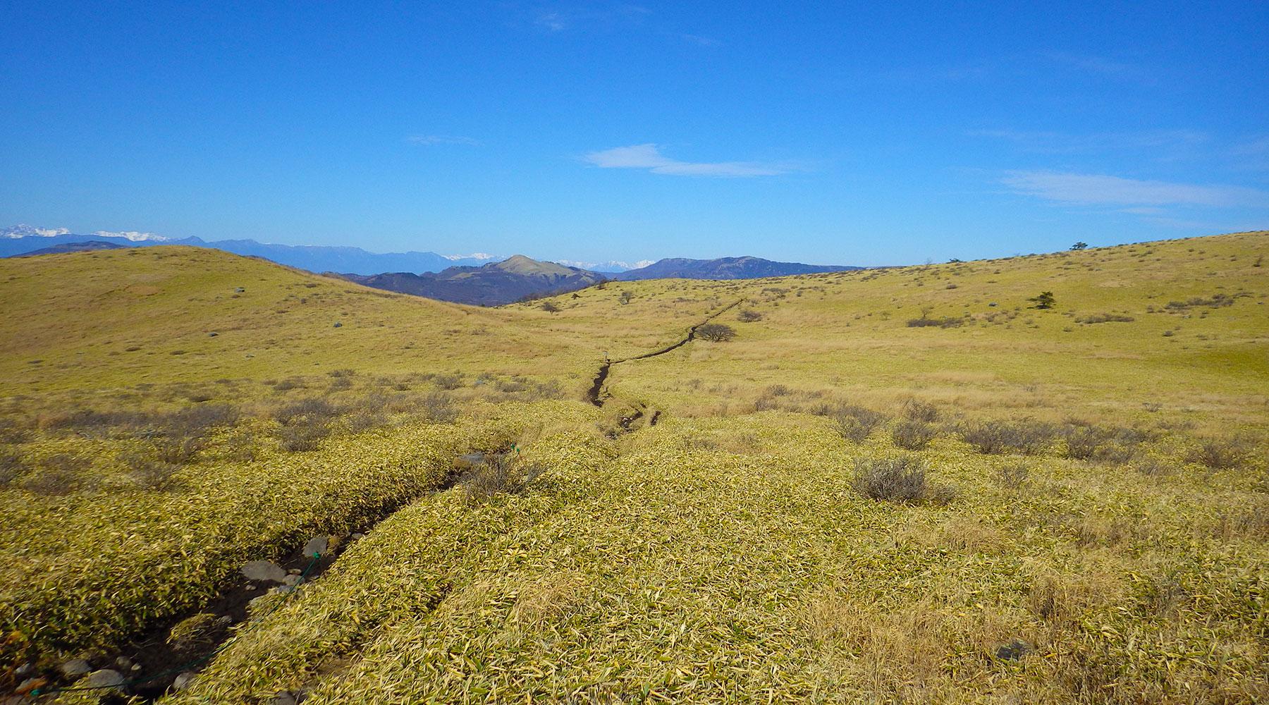蝶々深山から八島ヶ原湿原へ向かうルート