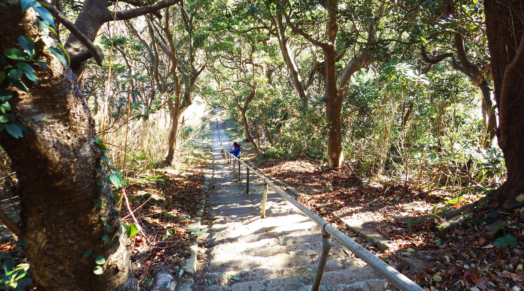 雲見浅間神社参道の階段を下る