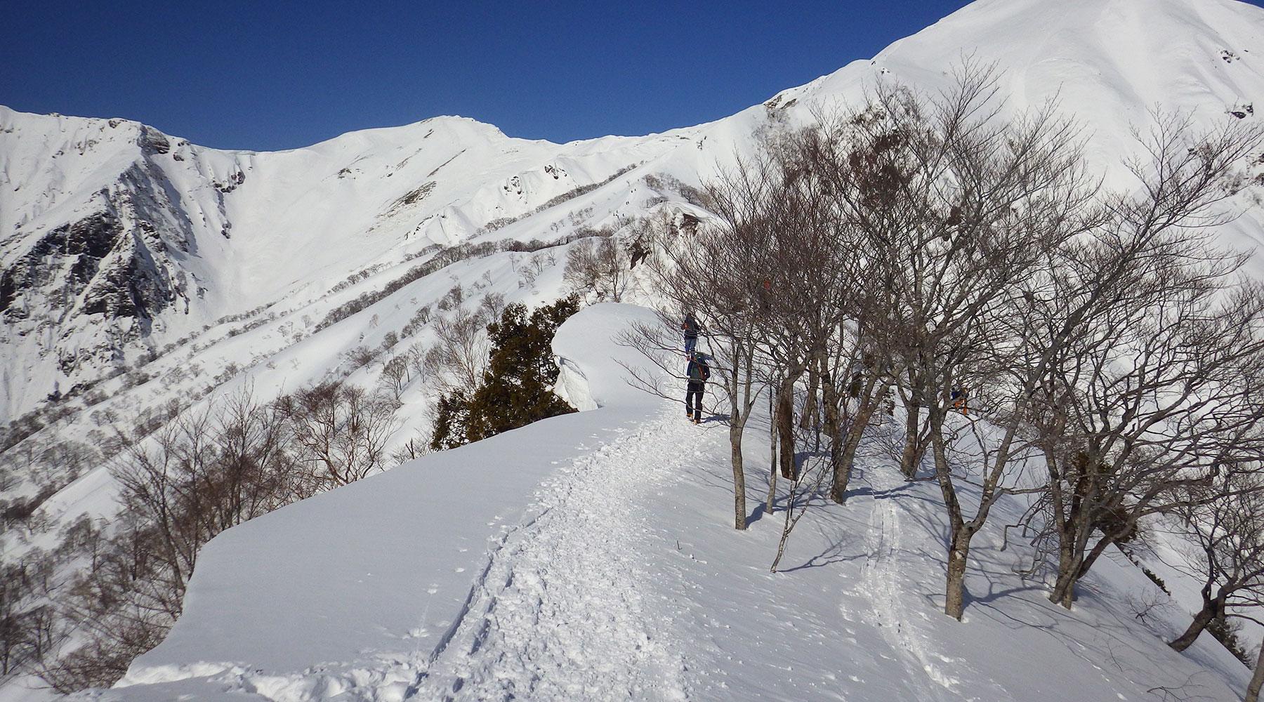 谷川岳・天神平スキー場~熊穴沢避難小屋間の冬道